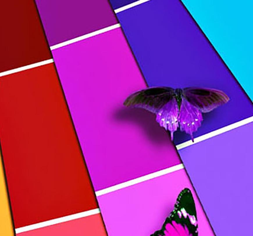 panorámica del sector de la impresión digital